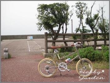 Gama20110505b