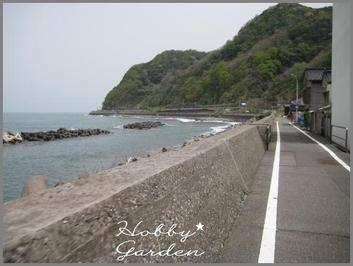 Gama20110505f