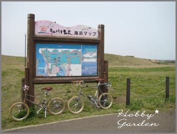 Gama20110507c