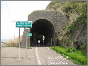 Gama20110507w