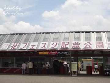 Hana20120612a